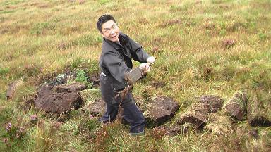 掘る 泥炭