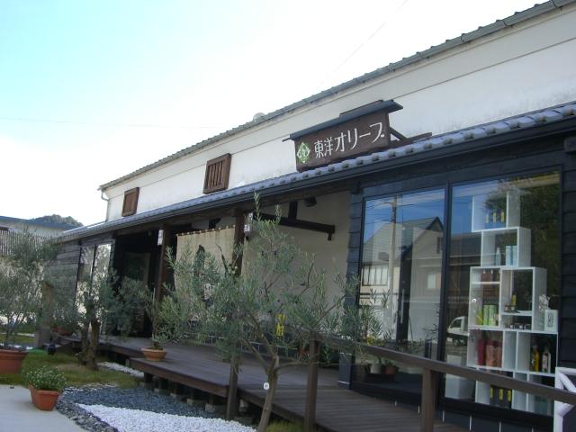 池田 東洋オリーブ